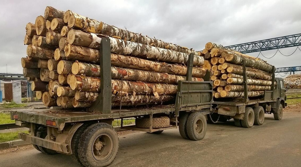Russian Roundwood exports