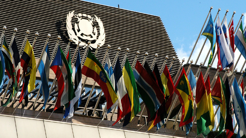 NGOs Criticize IMO for Opposing EU Carbon Plan